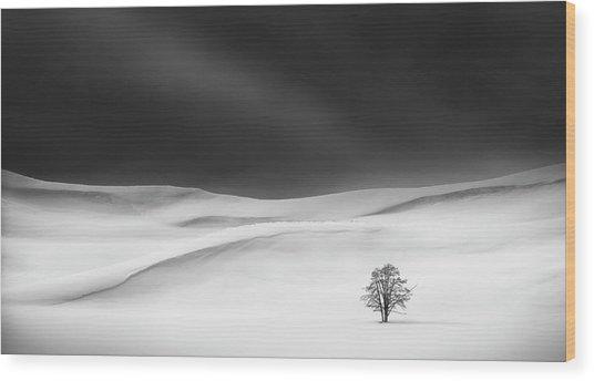 Solitude Wood Print by Huibo Hou