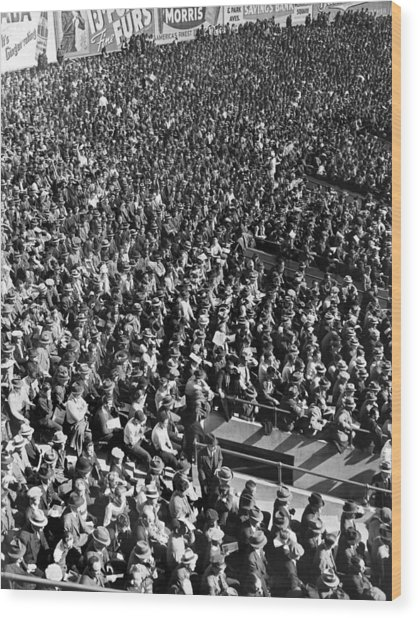 Baseball Fans At Yankee Stadium In New York   Wood Print
