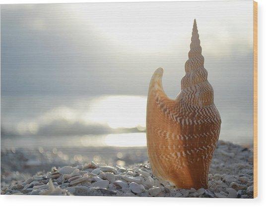 Something Beautiful Remains Wood Print