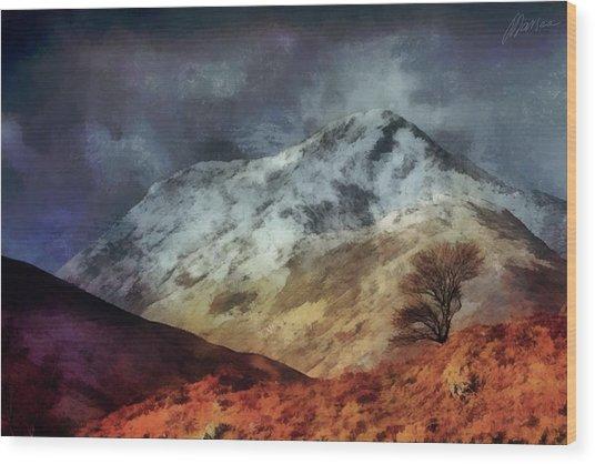 Somewhere In Scotland Wood Print by Marina Likholat