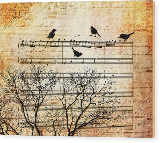Songbirds Wood Print