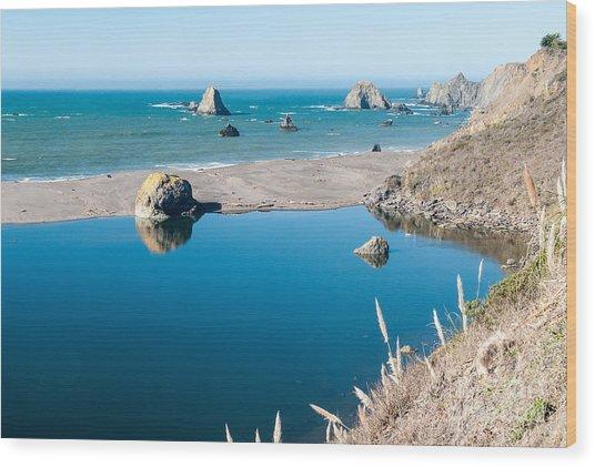 Sonoma Coast 2.2756 Wood Print by Stephen Parker