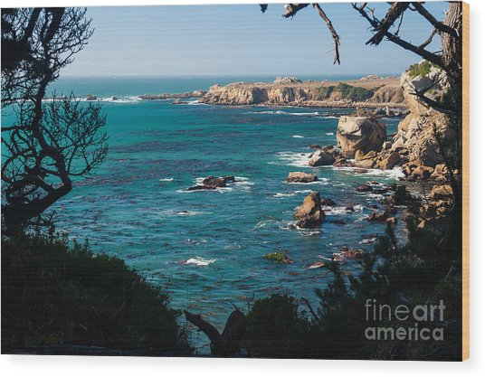 Sonoma Coast 2.2766 Wood Print by Stephen Parker
