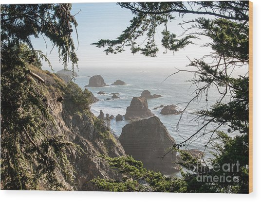 Sonoma Coast 2.2795 Wood Print by Stephen Parker