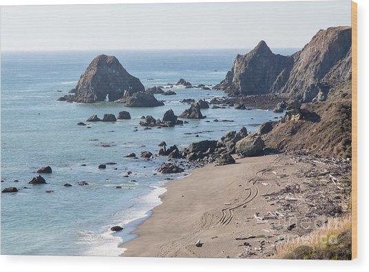 Sonoma Coast State Beach - 386 Wood Print by Stephen Parker
