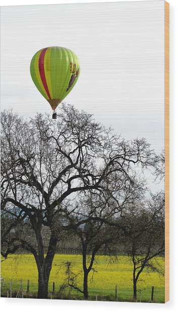Sonoma Hot Air Balloon Over Mustard Field Wood Print