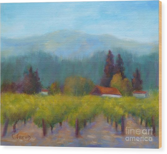 Sonoma Valley View Wood Print