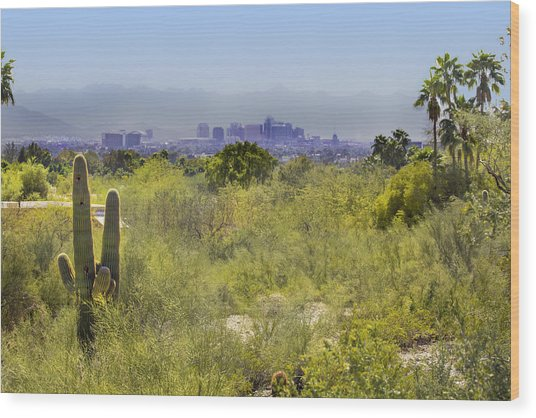 Sonoran Desert With Phoenix Skyline Wood Print