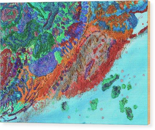 Soul Map I Wood Print