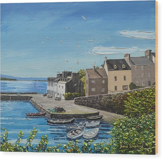 Sound Of Seagulls Roundstone Connemara Ireland Wood Print