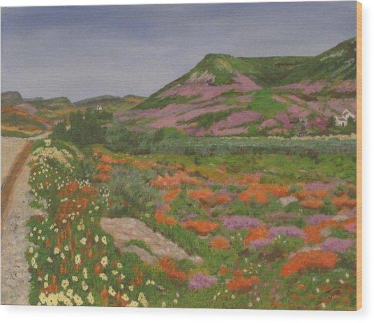 South African Grasslands Wood Print