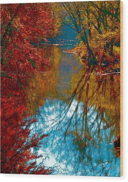 South Anna River Reflections Wood Print
