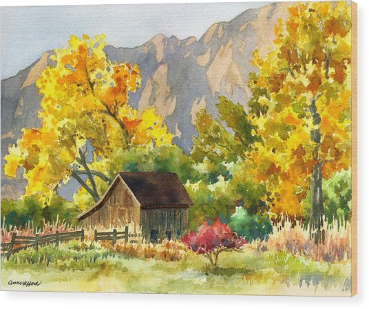 South Boulder Barn Wood Print
