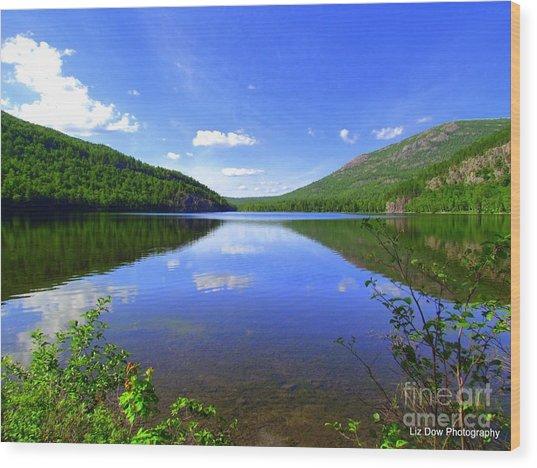 South Branch Pond Wood Print