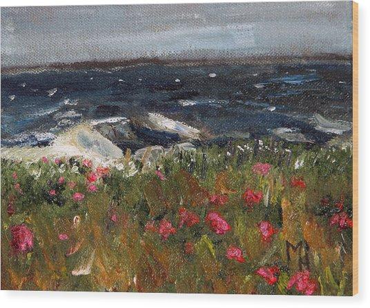 South Cape Beach Wood Print