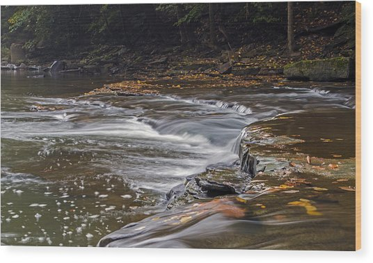 South Chagrin Reservation Creek Wood Print
