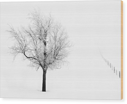 South Dakota Winter Wood Print