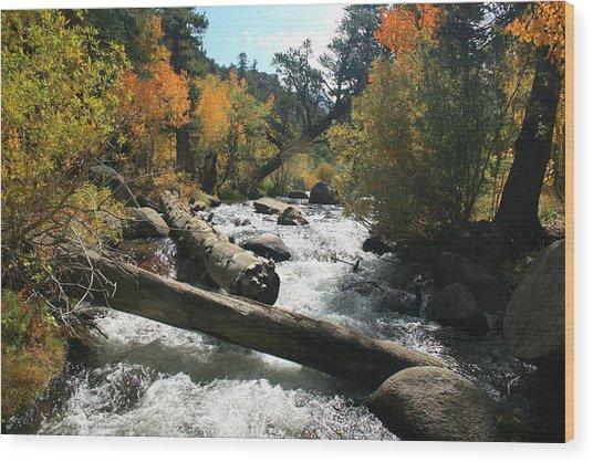 South Fork Bishop Creek Wood Print