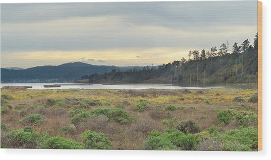 South Humboldt Bay Wood Print