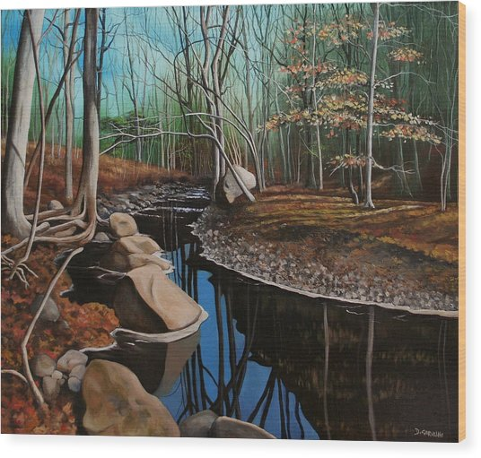 South Mountain Stream Wood Print