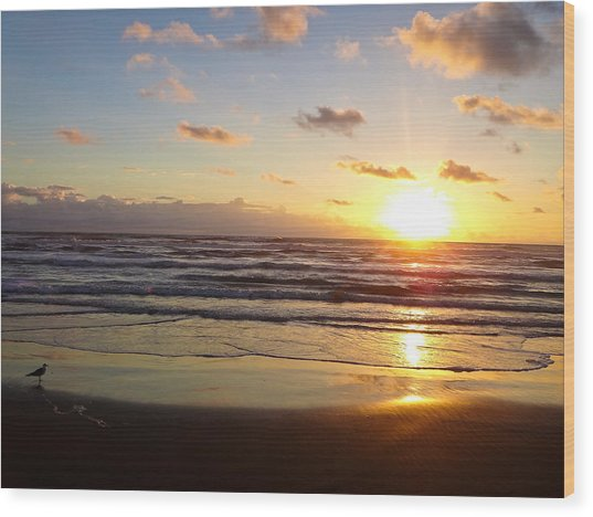 South Padre Island Sunrise Wood Print