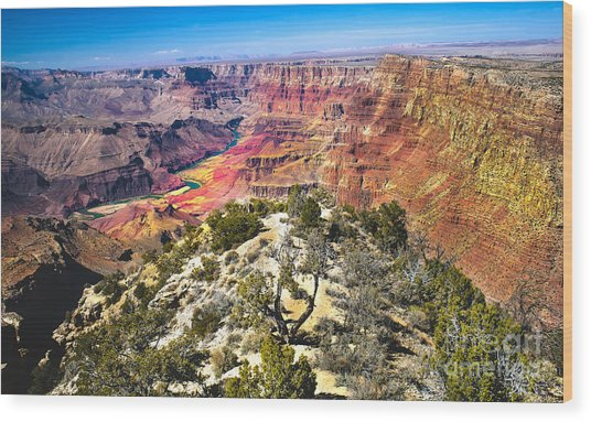South Rim From The Butte Wood Print