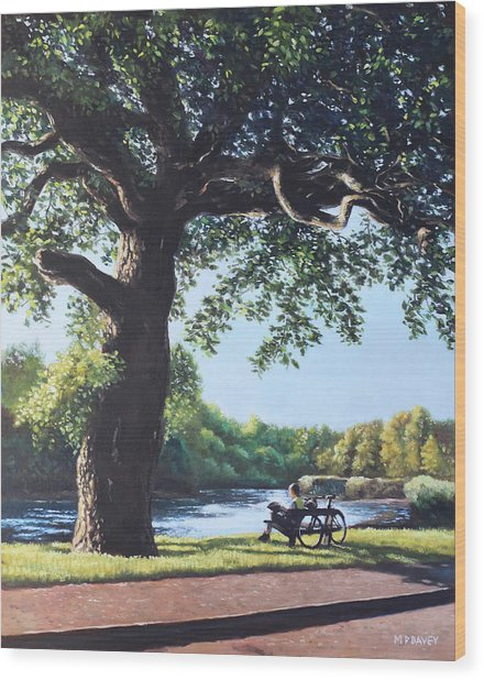 Southampton Riverside Park Oak Tree With Cyclist Wood Print