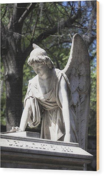 Southern Angel I Wood Print