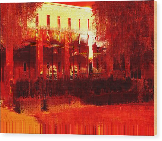 Southern Extremes Wood Print by Wendy J St Christopher