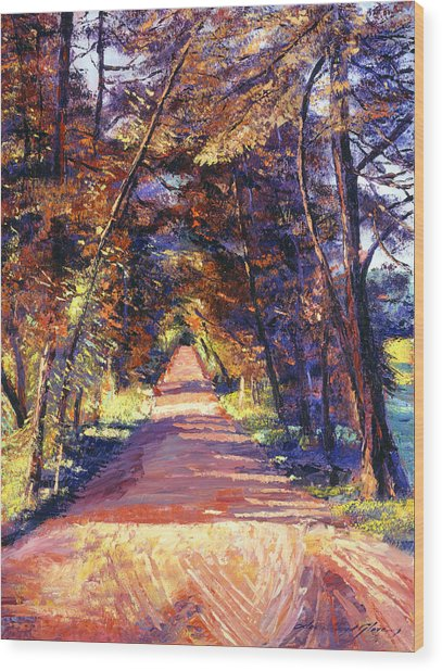 Southern France Country Wood Print by David Lloyd Glover