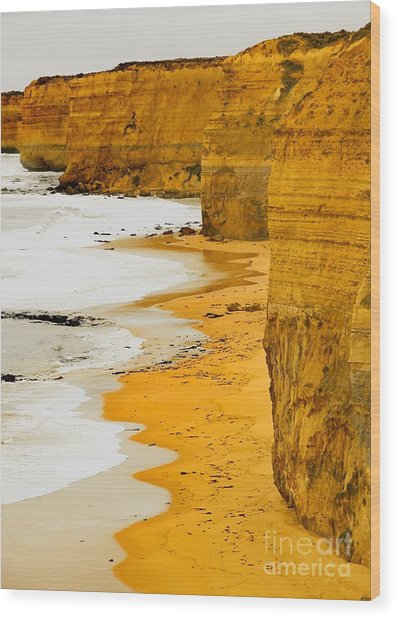 Southern Ocean Cliffs Wood Print
