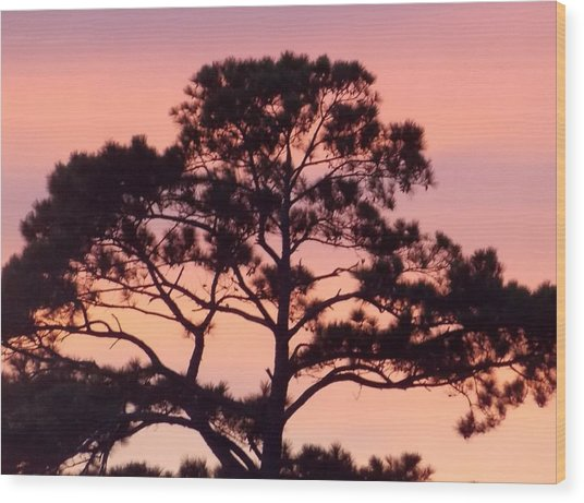 Southern Sundown Wood Print