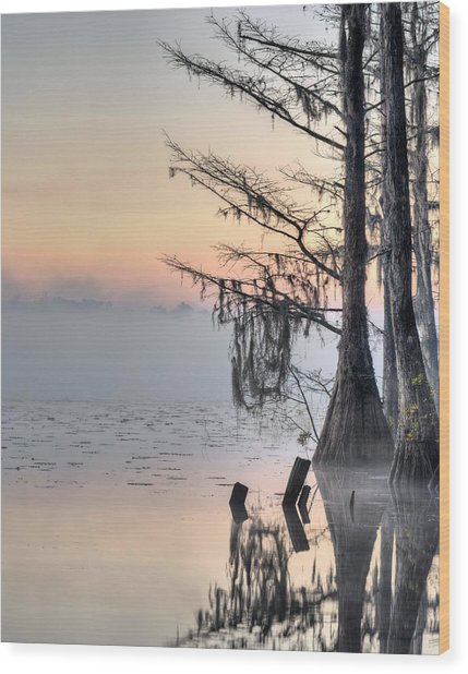 Southern Sunrise  Wood Print by JC Findley