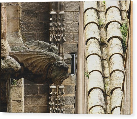 Spain - Seville Cathedral - Gargoyles Wood Print by Jacqueline M Lewis