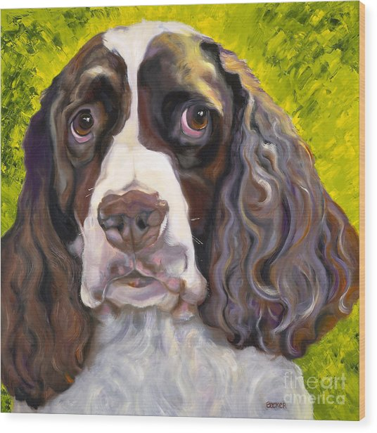 Spaniel The Eyes Have It Wood Print