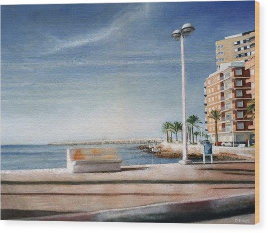 Spanish Coast Wood Print