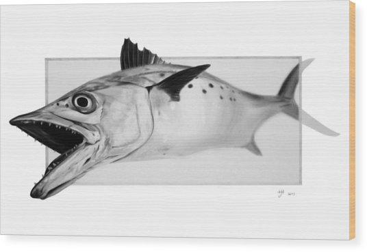 Spanish Mackerel - Pencil Wood Print