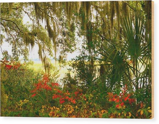 Spanish Moss Of Beaufort 1 Wood Print