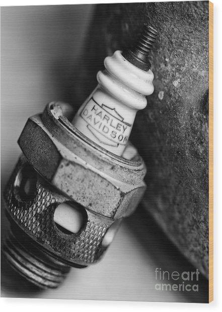 Spark Plug  1 Wood Print