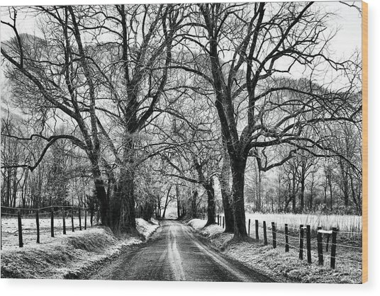 Sparks Lane During Winter Wood Print