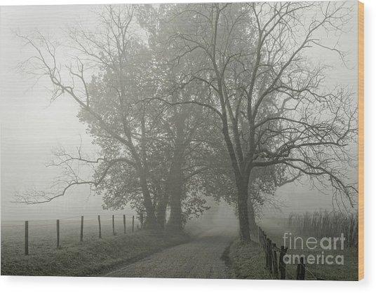 Sparks Lane Fog Wood Print