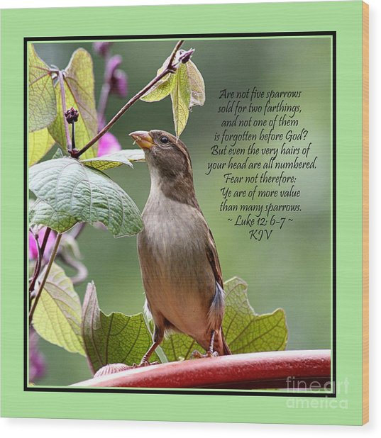 Sparrow Inspiration From The Book Of Luke Wood Print