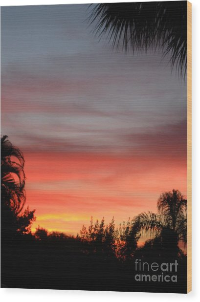 Spectacular Sky View Wood Print