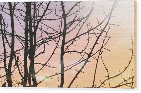 Spectrum Wood Print