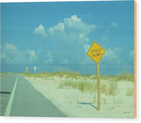 Speed Hump Wood Print