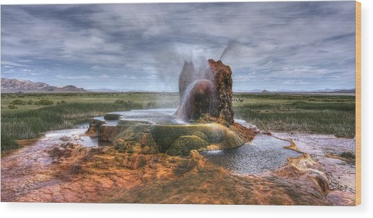 Spewing Minerals At Fly Geyser Wood Print