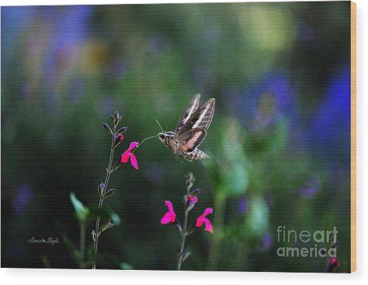 Sphinx Moth And Summer Flowers Wood Print