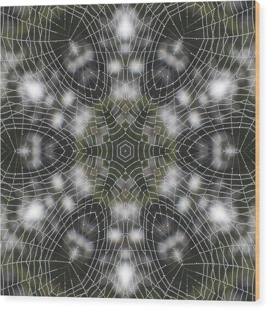 Spiderweb In Black Wood Print