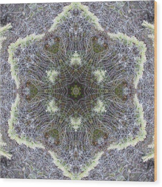 Spiderweb Pattern Wood Print