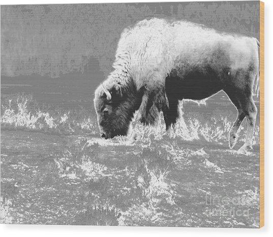 Spirit Bison Wood Print